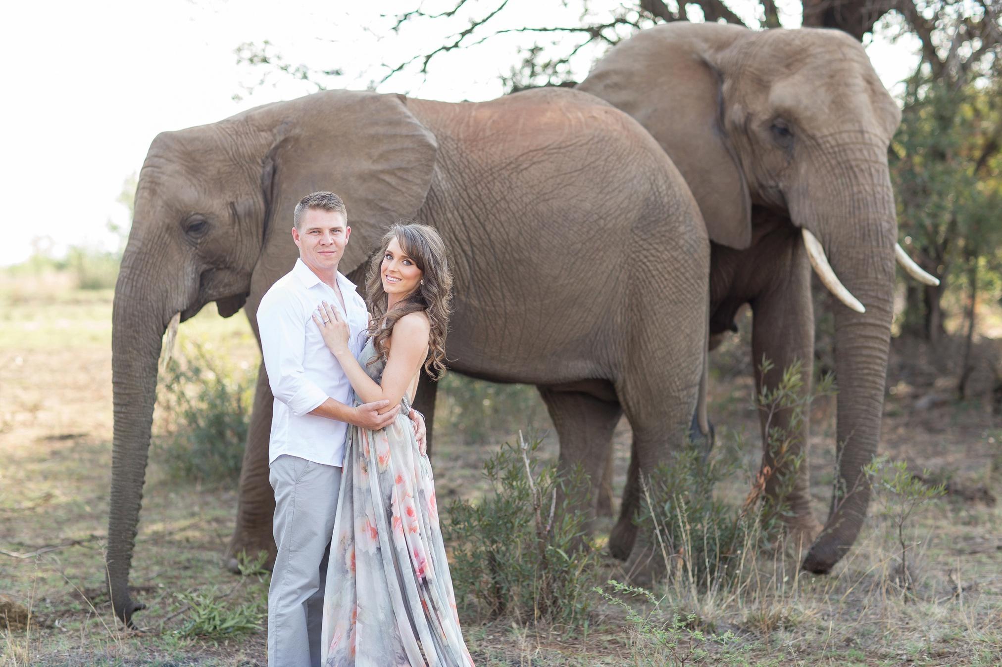 Glen_Afric_Kyle_and_Lindsay_engagement_elephants_safari_11
