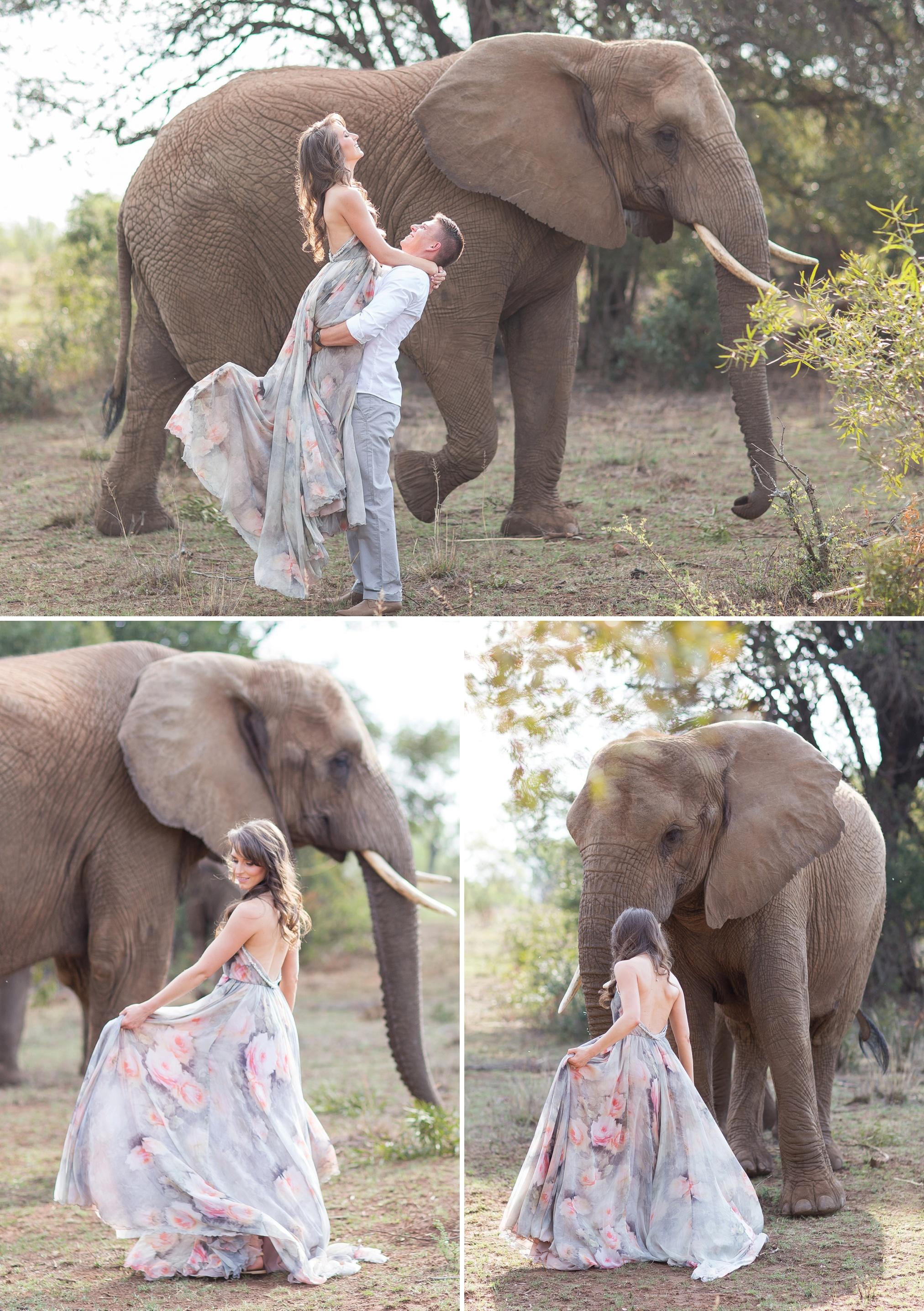 Glen_Afric_Kyle_and_Lindsay_engagement_elephants_safari_12