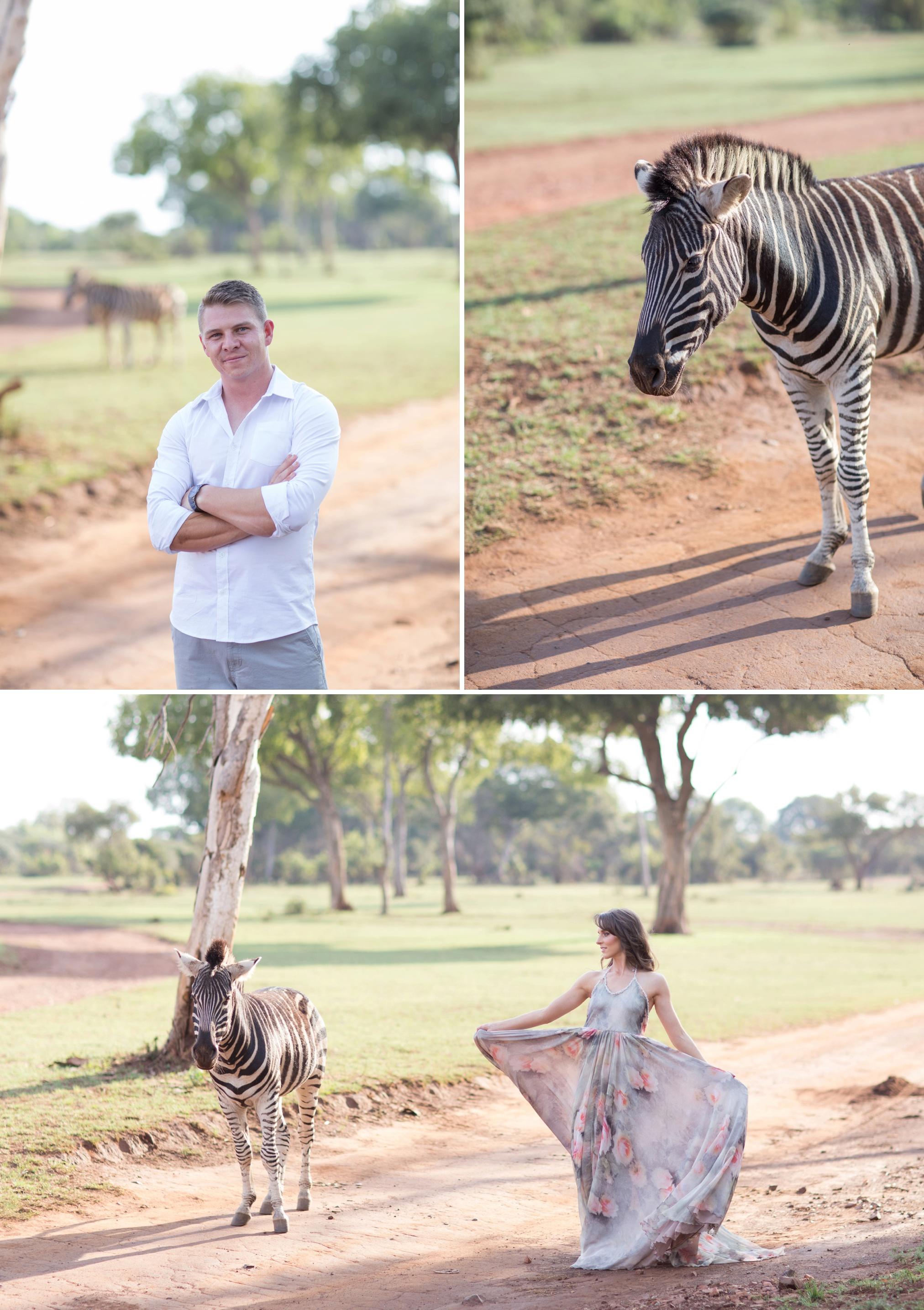 Glen_Afric_Kyle_and_Lindsay_engagement_elephants_safari_21
